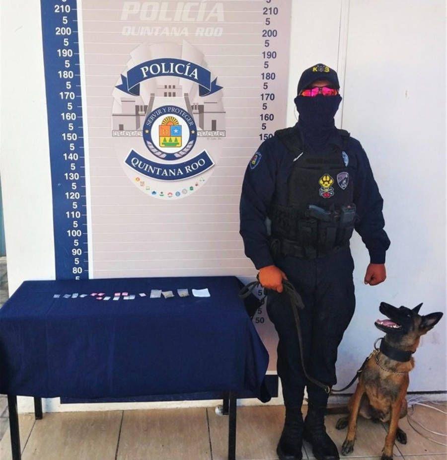 Binomio canino detecta droga en buzón