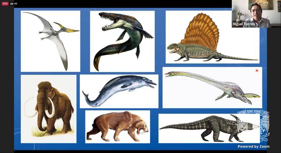 Repetimos condiciones similares a las que provocaron extinción masiva