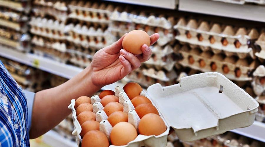 Se puede consumir dos huevos diarios sin afectar colesterol