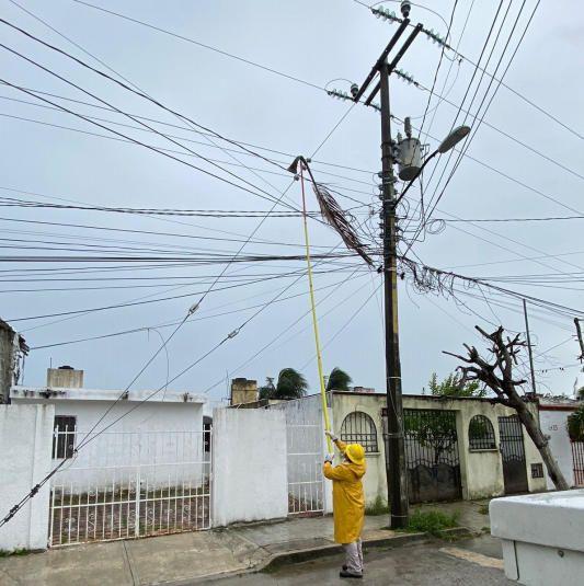 Se restablece 63% de suministro eléctrico a la población afectada por Grace: CFE