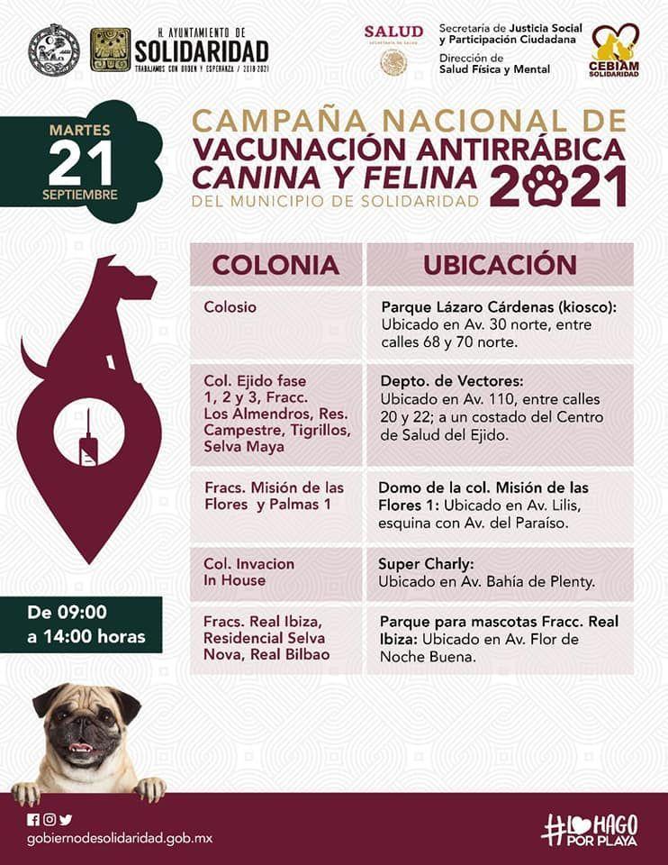 19 de septiembre inicia la campaña de vacunación para perros y gatos