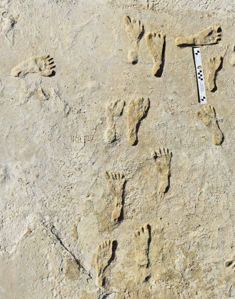 Encuentran huellas humanas de más de 23 mil años de antigüedad