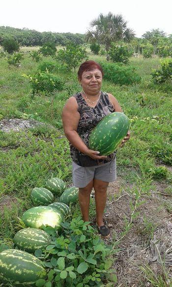 Entregan en Puerto Morelos 100 paquetes de semillas de hortalizas